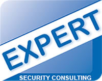 Howard-levinson-Expert-Security-Consulting.jpg