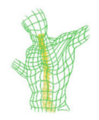 William-Dillin-MD-Spine-Logo.jpg