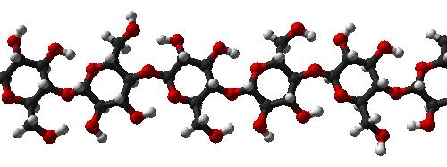 Cellulose Molecules