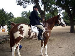 gregory-coulson-equine-accident-expert-photo.jpg