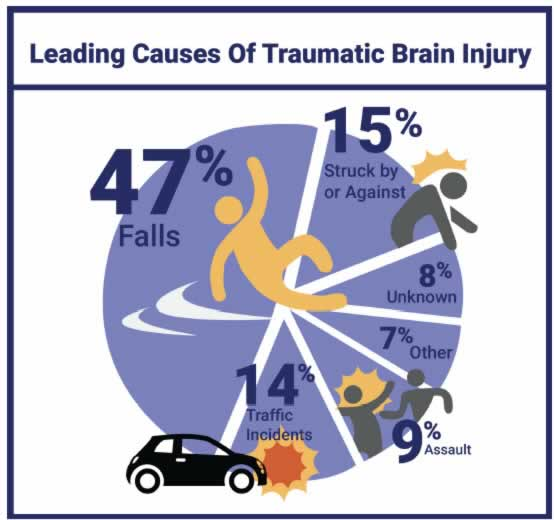 leading causes TBI chart photo