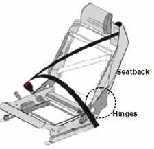 seatback picture